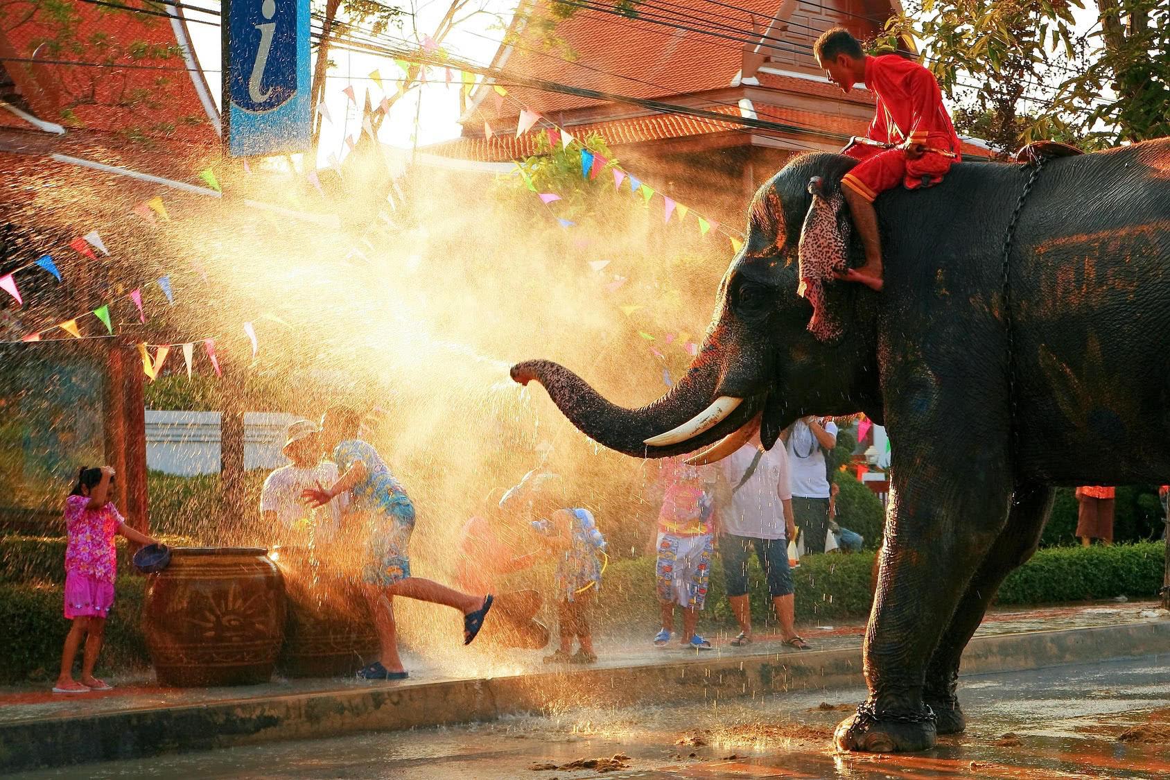 Tha Chang der kleine Elefant ist unser Wappentier für unser thailändisches Restaurant in Stuttgart