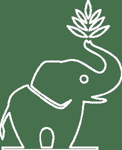 Tha Chang Kontur Logo weiß